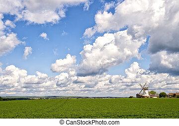 capim, verde, paisagem, nublado