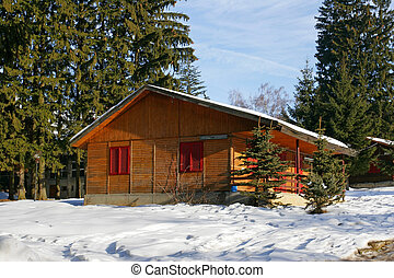 Alpine cabin - Traditional alpine cabin in the mountains