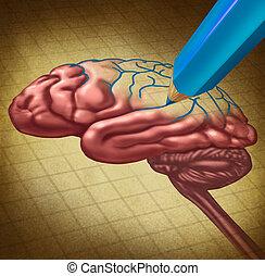 reparar, a, cérebro