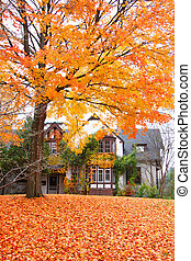 Historic Cranbrook house in autumn time