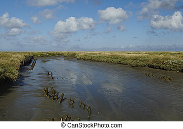 Westerhever (Germany) - Salt meadows with ditch - Landscape...