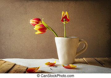 Transience Still life tulips cup petals - Transience: Still...