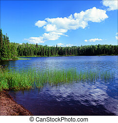 Scenic Homer Lake - Minn BWCAW - Summer perspective on a...