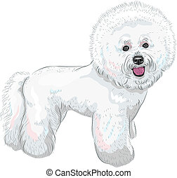 vector white cute dog Bichon Frise breed - white cute dog...
