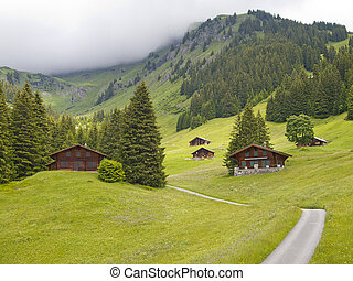 Swiis chalet in the valley of Switzerland - Swiss chalet in...