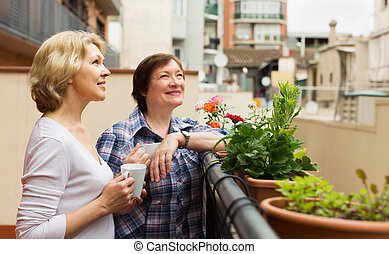 Two mature women drinking tea stock image - image: 45174245.