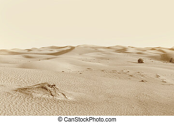"dunes in the desert - landscape ""dunes in the desert"""