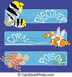 fish banners 3 - three tropical fish banners no text...