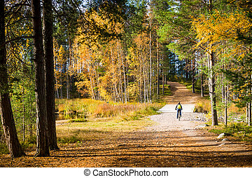 Autumn ciclyng - Woman riding bicycle at colorful autumn...