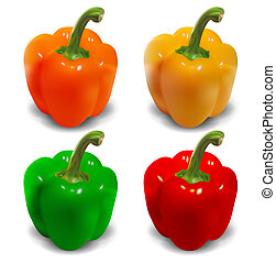 Bell pepper vector - orange, yellow, green, red