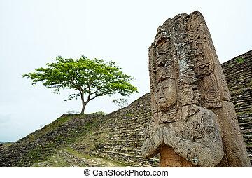 Primer plano, jaguar, pájaro, Peccary, Maya, regla, estatua,...