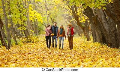 Leaves Rustle - Four friends approaching camera walking in...
