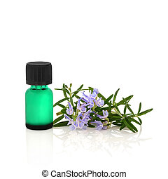 Rosemary Herb Essential Oil - Rosemary herb leaf sprig in...