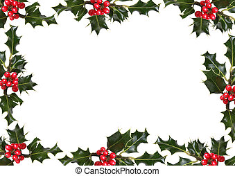 Holly Leaf and Red Berry Border - Holly leaf sprigs with red...