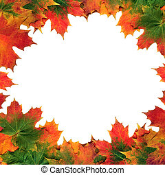 Maple Leaf Abstract Frame