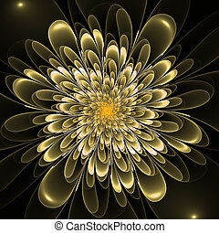 Beautiful lush beige flower on black background Computer...