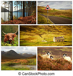 Scotland collage - Collage showing different landscape and...