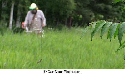 villager grass trimmer - villager with mask cut talll grass...