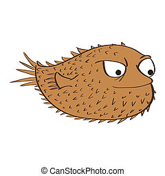 sea life - a brown blow fish on a white background