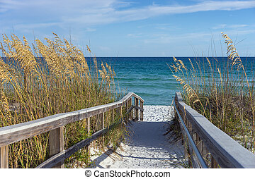 Beach Boardwalk with Dunes and Sea Oats - Sandy boardwalk...
