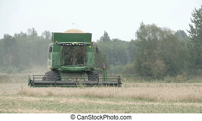 A wheat harvester running on the field with a man driving on...