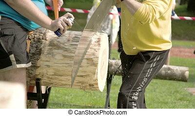 Two men are trying to cut the big log with the saw There is...