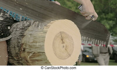 A log cutting competition with a big saw
