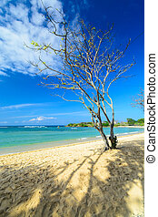 Nusa Dua - this photo is from the bay beach of Nusa Dua in...