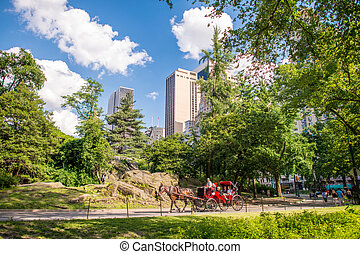 Horse Carriage in Central Park, New York City. Sourrounding...