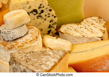 Various types of cheese composition macro close-up