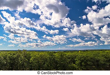 Lazy Summer Day - Blue sky and green forest on a sunny...