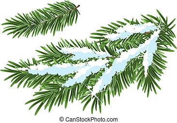 Fur-tree branch under snow Illustration in vector format