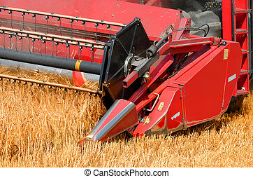the combine harvester