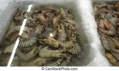 Fresh big shrimp in market, Thailand Koh Samui - Fresh big...