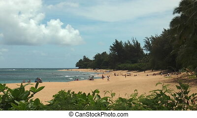 beach life at beautiful beach on Kauai Island, Hawaii
