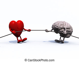 heart and brain tug of war rope, 3d illustration