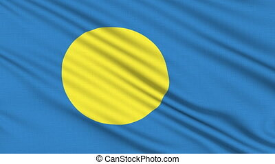 Palau Flag icon, with real structure of a fabric