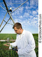 Agronomist in field - Agronomist in white coat examining...