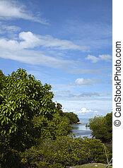 Phi Phi island landscape, Thailand
