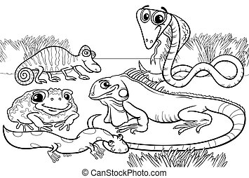 reptiles and amphibians coloring page