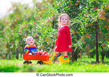 Two children playing in an apple garden - Happy little...