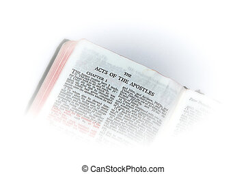 bible open to acts of apostles vignette - holy bible open to...
