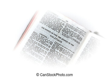 bible open to galatians vignette - holy bible open to the...