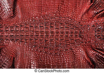 Crocodile leather - The natural brown crocodile leather