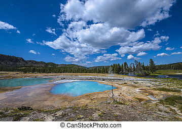 Black Opal Pool Yellowstone - Black Opal Pool in Biscuit...
