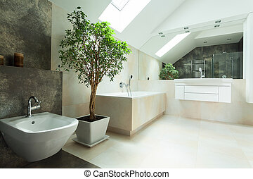 Modern house bathroom - View of spacious bright modern house...