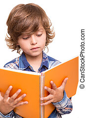 Boy reading book - Blond cute boy reading a book over white