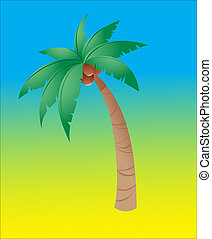 Coconut tree isolated in a color background
