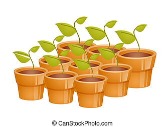 flowerpots - a group of flowerpots with Seedlings on a white...