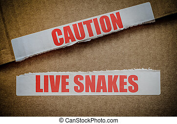 Caution Live Snakes - An Opened Cardboard Shipping Box...